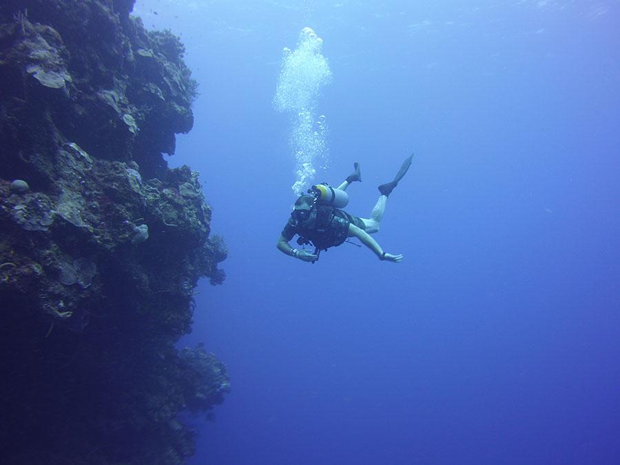 Padi diving Puerto Morelos