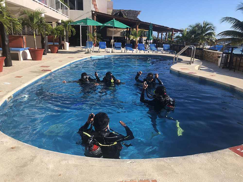 Padi Dive Master Certification with Om Delfin Dive center Puerto Morelos Mexico